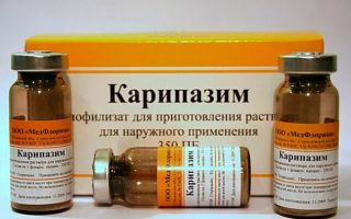 Ампулы Карипазим: лечение электрофорезом при грыже позвоночника