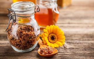 Показания к применению настойки пчелиного подмора