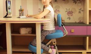 Стул для школьника ортопедический — виды, критерии при выборе, стоимость