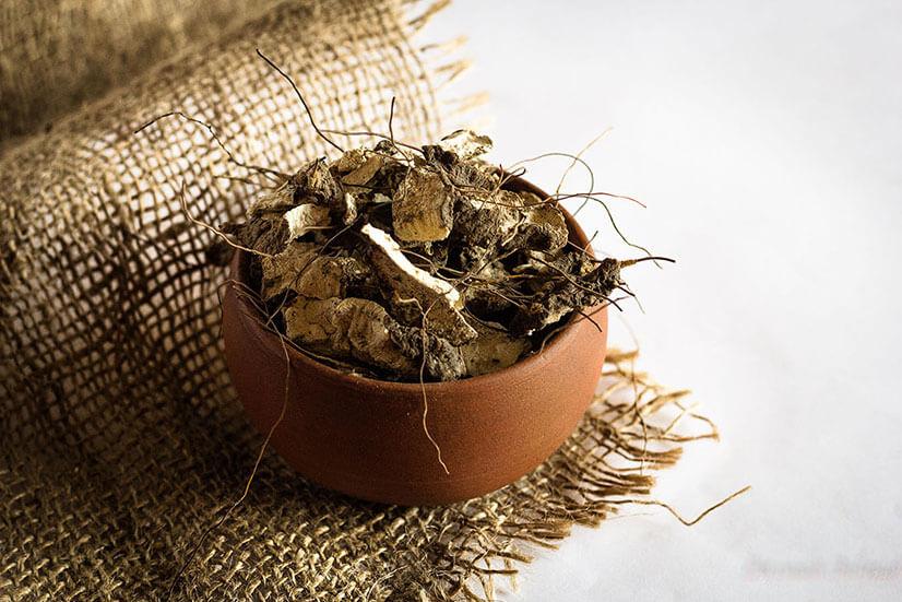 Рецепт настойки из адамова корня для лечения суставов